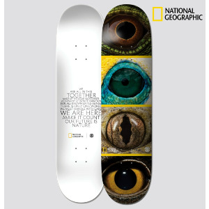 NAT GEO - EYE QUAD